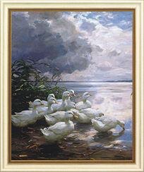 """Bild """"Enten am wolkenverhangenen Seeufer"""", gerahmt"""