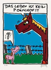 """Bild """"Das Leben ist kein Ponyhof"""" (2012), ungerahmt"""