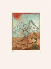 """Bild """"Le soleil et L'Arnique des Montagnes"""" (1981), gerahmt"""