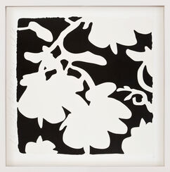 "Bild ""Lantern flowers - White and Black"" (2017)"